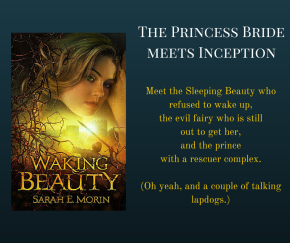Leave a Comment and Win a Copy of WakingBeauty